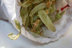 Kuchařka ze Svatojánu: LÍPA Korn, Asparagus, Mexican, Vegetables, Ethnic Recipes, Studs, Vegetable Recipes, Mexicans, Veggies