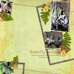 Butterfly Pavilion Digital Scrapbooking Layout by Jan Hicks