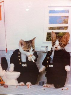 Two little delinquents in Japanese schoolboy uniforms ,smoking in the bathroom.