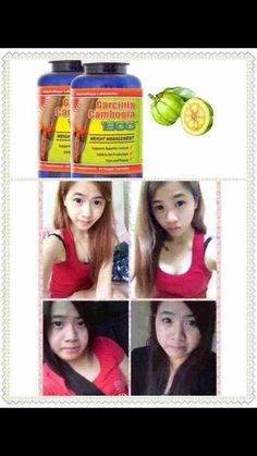 U.S. and European sales champion! U.S. program strongly recommend weight-loss products! GARCINIA CAMBOGIA 1300 by the Malaysian government certification (Universiti Sains Malaysia - Toxicology Laboratory) and SAMM (Skim Akreditasi Makmal Malaysia) specifications, test no harm to the human body slimming doping ingredients. Laboratory report did not specify the following components: * Sibutramine Sibutramine * N-desmethylsibutramine norepinephrine interested pm me joey…