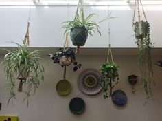 Hanging macrame plants in my kitchen in North London... The 70's revisited!! ❤️