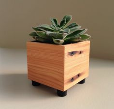 Succulent Planter Pot, Rustic Planter, Reclaimed Wood Mini Cube Succulent Pot, Wood Accent by andrewsreclaimed on Etsy https://www.etsy.com/ca/listing/224502607/succulent-planter-pot-rustic-planter