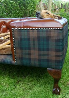 Tartan and leather - masculine, yet classy...