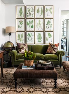 retro wohnzimmer ideen You are in the right place about living room navy Here we offer you the most Green Velvet Sofa, Green Sofa, Green Couch Decor, Olive Green Couches, Emerald Green Couch, Purple Velvet, Green Home Decor, Retro Home Decor, Earthy Home Decor