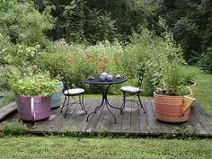 I recently gave a program on herbs to grow for tea. Now would be the time to design a tea party garden or plant tea herbs in containers. See the list below for my favorites. Container Vegetables, Container Gardening, Veggies, Garden Beds, Garden Plants, Pallets Garden, Pallet Gardening, Garden Floor, Growing Herbs