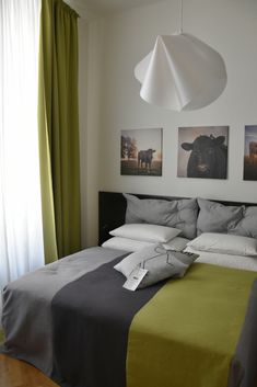 Best hostel in Prague: At Mosaic house, you can rent shared dorm or private apartment. Some are done in quirky MOOo design with cute cows. This way, you can stay in style when in Prague! The Ultimate List of the coolest and best hostels in Prague, Czech Republic. In this guide, you will find comfortable and cheap hostels, where I always return.  #hostel#hostellife#prague#cz#czechrepublic#europe#backpacker#backpacking#backpackingeurope Cute Cows, Prague Czech, Backpacking Europe, Cheap Travel, Backpacker, Hostel, Czech Republic, Great Places, Dorm