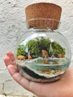 Home Decor and Items to Enhance with Style Terrarium Scene, Terrarium Jar, Terrarium Plants, Succulent Terrarium, Succulents Garden, Small Terrarium, Hanging Terrarium, Ideas Florero, Moss Plant