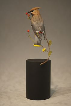 Wood Carving: Bohemian Waxwing - Josh Guge I like the base, its different Wood Carving Designs, Wood Carving Patterns, Wood Carving Art, Wood Carvings, Carved Wooden Birds, Wood Bird, Ceramic Birds, Pottery Sculpture, Bird Sculpture