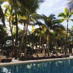 We just love pool days in the middle of December! Photo by @_ana_2_0_1_5  #guestphototuesday   #GBHLife