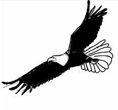 """Résultat de recherche d'images pour """"dessind'aigle"""""""