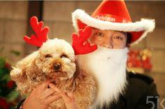 Merry Christmas from So Ji Sub and Kiki #51k #sojisub omona, i want to hug n big kiss this Santa!!! ♡♡♡