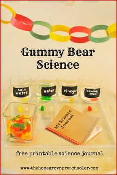 Great science experiment for preschoolers with a free printable science journal. www.thehomegrownpreschooler.com