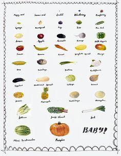 Original watercolor art print week by week fruits and vegetables growing baby pregnancy pregnant food art by koalarazorclock on Etsy