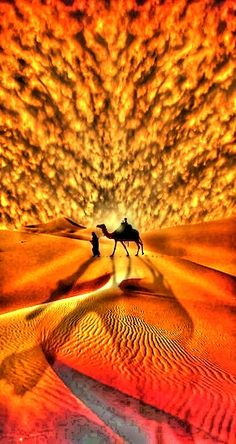 Orange & yellow dotted clouds in the blazing sunset over the Desert as a camel and his driver walk through the glowing sand in the distance that reflects the sunlight's dying rays.
