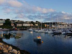 Plenty of yacht moorings in Brixham marina, Brixham, Devon.
