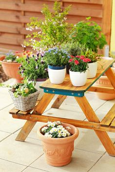 With container gardening,  cleaning and replacing the old ones with the new is much easier. #homeandgarden, #planters, #gardenchat