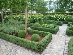 love this boxwood garden