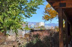 Rio Grande Zoo in Albuquerque, New Mexico's ABQ BioPark