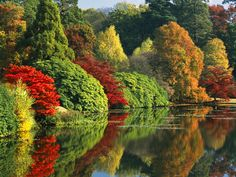 Sheffield Park Garden is an informal landscape garden five miles east of Haywards Heath, in East Sussex, England. Sheffield Park, Sheffield England, Nature Tree, East Sussex, Photo Wallpaper, Flower Photos, Nature Pictures, Poster Size Prints, Twitter
