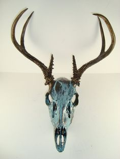 Deer skull Painted Deer Skulls, Painted Antlers, Deer Horns, Animal Bones, Deer Art, Skull Painting, Skull Design, Crane, Antler Art