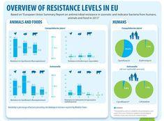 Mamme attenzione alla carne! Pericolo dinfezione e antibiotico resistenza