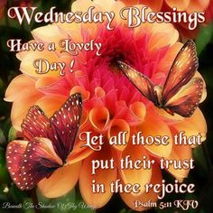 874 Best Wednesday Blessingsgreetings Images Good Morning