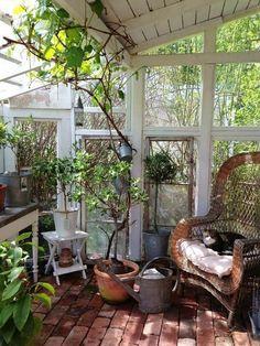 Bilderesultat for schmiedeeisen wintergarten selber machen