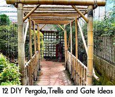 12 DIY Pergola,Trellis and Gate Ideas