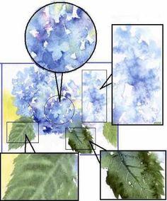 Hydrangeas watercolor painting tips