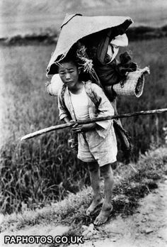 - Korean War - Refugee 1950