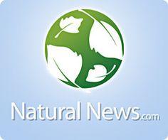 Melatonin controls weight gain, obesity and heart disease