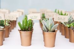 DIY succulent favors/escort cards: http://www.stylemepretty.com/pennsylvania-weddings/2015/03/04/beautiful-pennsylvania-wedding-at-michener-art-museum/ | Photography: Tina Jay - http://tinajayphotography.com/