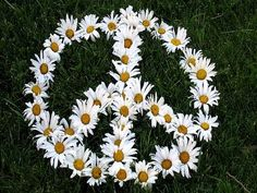 ☮ American Hippie Art ☮ Peace Sign .. Daisies