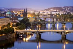 Illustration Sketches, Graphic Illustration, Charles Bridge, Before Sunrise, Blue Hour, National Museum, More Photos, Old Town, Europe