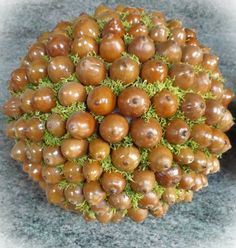 Eikel bol Tabletop Christmas Tree, Seed Pods, Xmas Decorations, How To Get Warm, Acorn, Seeds, Diy Crafts, Wreaths, Seasons