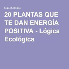 20 PLANTAS QUE TE DAN ENERGÍA POSITIVA - Lógica Ecológica