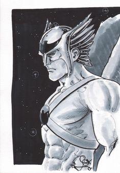 Hawkman by Nicola Scott