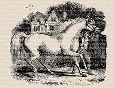 Man with Horse Clip Art Image – Vintage Animal Trainer Illustration – Printable Transfer – Digital Stamp - instant download clipart - CU OK