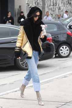 Kendall Jenner Has Fashion-Forward Winter Boots to Go With Her Chic New Puppy