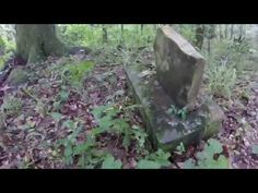 Exploring The Ghost Town of Ellaville in Madison County (Drew Family Cemetery) - YouTube