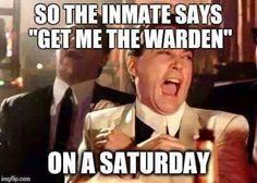 Funny Correctional Officer Meme : Image result for office space meme work humor