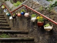 Tea pot garden! So zen!