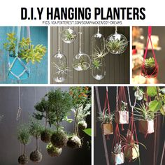 Hanging planter diy ideas can have kids do.paint cans white hang from hooks that are already thereHanging planter diy ideas and all kinds of other DIY hanging things.ScrapHacker - The Hub for Scrap Cycling InnovationLove the hanging air plants! Porch Plants, Air Plants, Potted Plants, Indoor Plants, Diy Hanging Planter, Diy Planters, Planter Ideas, Plant Holders, Garden Inspiration