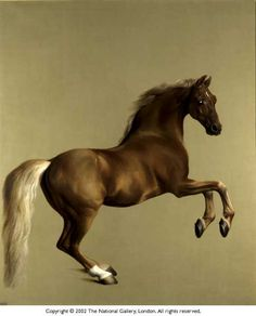 George Stubbs super fan!  This is Whistlejacket.