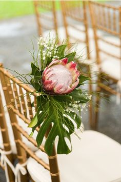 Wedding Flower Bouquets - Weddings have a tendency to be very costly and skilled wedding planners aren't cheap. In fact, you don't have to wait around for a wedding! The wedding is just a one-time occasion at wh… Flor Protea, Protea Bouquet, Protea Flower, Protea Wedding, Flower Bouquet Wedding, Floral Wedding, Exotic Wedding, Flower Bouquets, Gardens