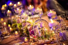 Beauty and the Beast inspired rose dome and table decor. Photo: Ali, Disney Fine Art Photography