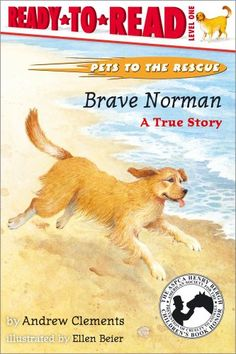 Brave Norman : A True Story Reviews