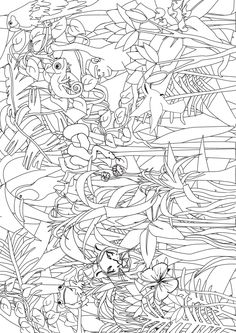 Rainforest colouring page - fantastic site, lots of free activity ...