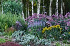 Wielką rabatę bylinową pod brzozami utworzono z ponad 7 tys. bylin w kilkudziesięciu odmianach i gatunkach. Rabata posiada ponad 200 m długości. Stworzona została na tle lasku brzozowego. Kolorowo kwitnącej rabata znakomicie prezentuje się na tle ściany z biało-szarych konarów brzóz. Dodatkową atrakcją jest 12 monumentalnych krzeseł wykonanych z brzozowych żerdzi ustawionych wśród bylin. Plants, Plant, Planets