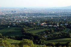 View of Vienna from Kahlenberg Looking Gorgeous, Vienna, Rooftop, Austria, Germany, River, Shop, Outdoor, Outdoors